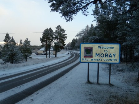 moray
